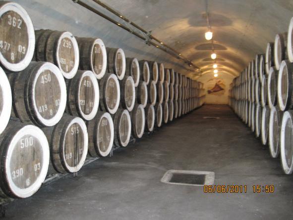 дегустация вин судак массандра - Золото Сугдеи (обзорная экскурсия по Судаку + дегустация  массандровских вин).