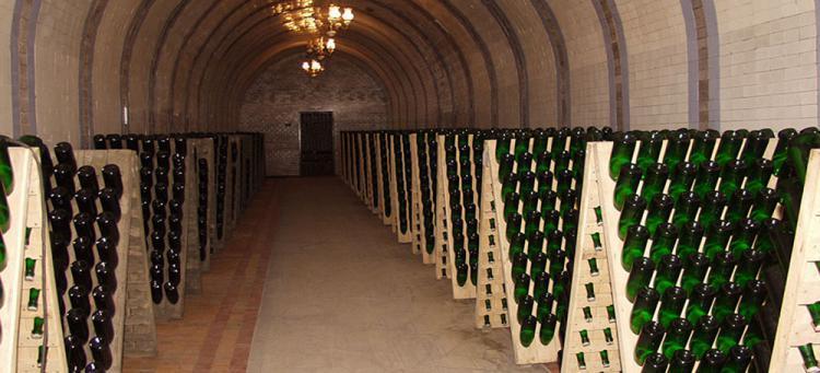 шампанское новый свет - Дом шампанских вин: экскурсия+дегустация
