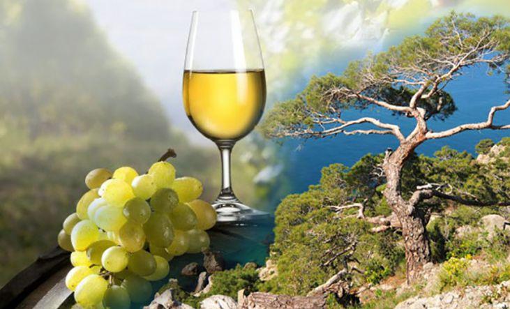 Крым и вино. - Винный тур по  Крыму  «In vino veritas»!  (для групп от 6 чел)