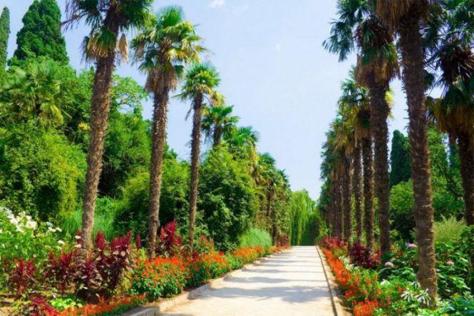 """Никитский ботанический сад - Ялта: """"Прекрасны вы, брега Тавриды..."""""""