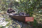 музей-лодка - Старый Крым